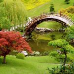10 Amazing Garden Bridge Ideas