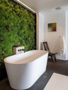 Stunning and Luxury Bathtub