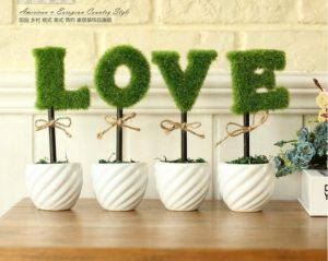 Decorative Potted Green Plants