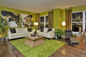 Green Color Living Room Decorating