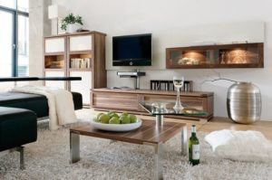 Ideas for Decor Your Living Room in Modern Style