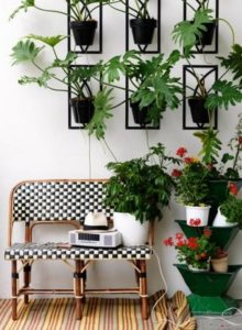 Ideas for Home Decor with Plants