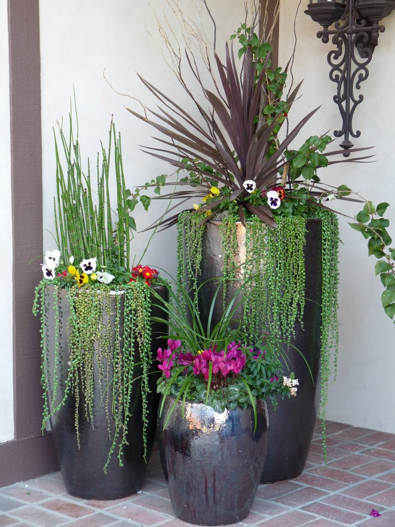 Indoor Decor with Flower Pots