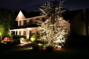 Landscape Outdoor Lighting Ideas
